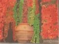 terracotta-pot.jpg